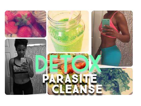 Parasite Detox Weight Loss by Detox Parasite Cleanse How I Jump Started My Weight Loss