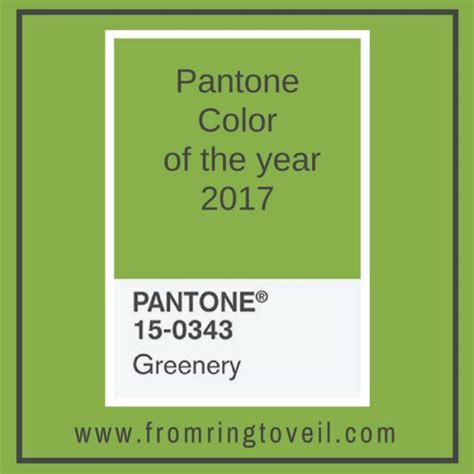 pantone color of the year hex pantone colors of the year interesting affordable history of pantone color of the year