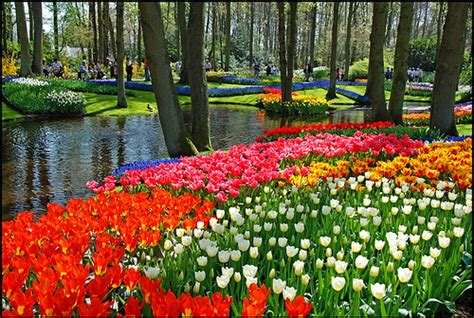 most beautiful gardens in the world all fun here most beautiful gardens in the world