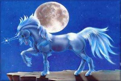 ver imagenes unicornios atr 233 vete narvales los unicornios reales