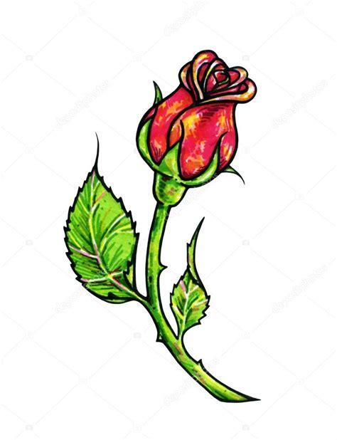 rosa rossa fiore rosa rossa fiore 232 isolato su una priorit 224 bassa