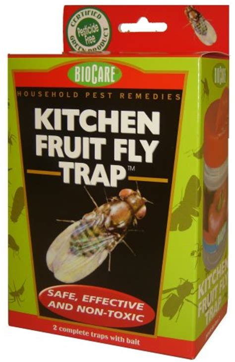 Fruit Flies In Kitchen by Springstar Inc S415 Kitchen Fruit Fly Trap 2 Pack At