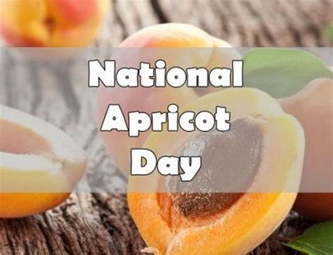 apricots celebrate national apricot day every day with 40 sweet fruity recipes books national fig newton day january 16 mobile cuisine
