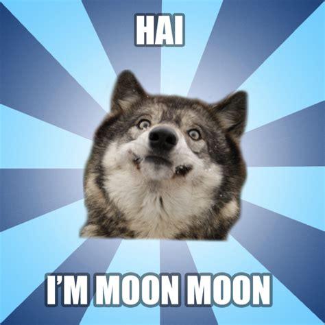 Moon Moon Meme - moon moon meme by ragewolf16 on deviantart