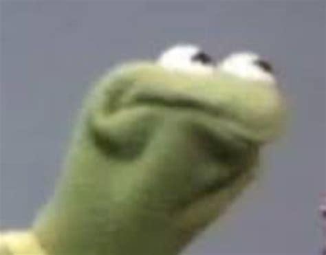 Kermit Meme My Face When - best 25 kermit face ideas on pinterest arachnophobia