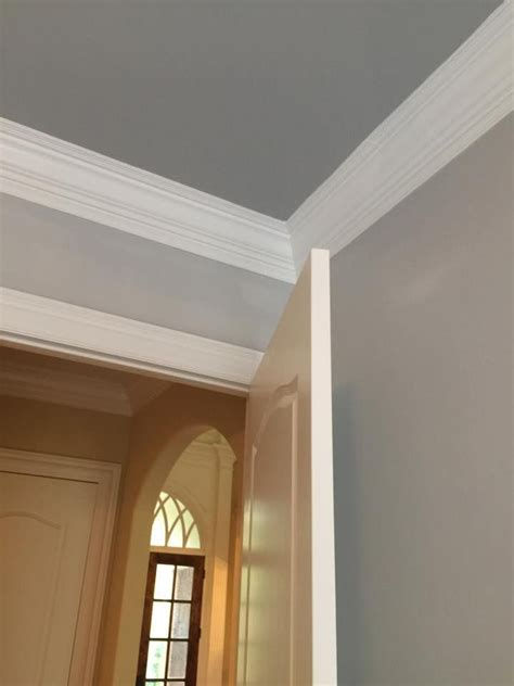 walls sw passive gray trim sw pure white ceiling sw
