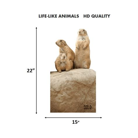 printable prairie dog targets 2d quot prairie dogs quot archery target solo targets