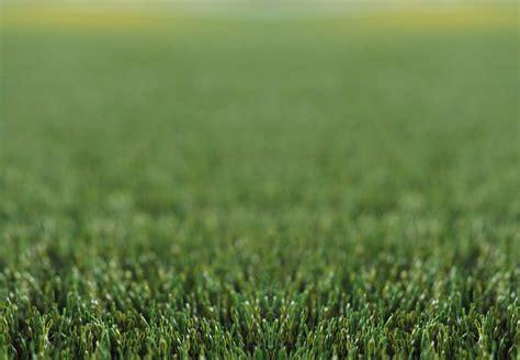 background rumput rumputsintetis com distributor resmi domo sport grass