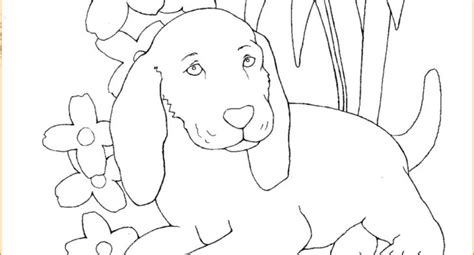 cute coloring pages for 10 year olds cute animal coloring pages for 10 year olds ideas resume
