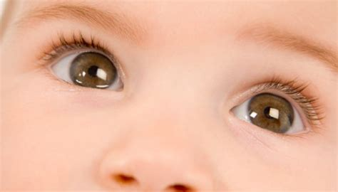 eye color probability how to calculate the probability of a baby s eye color