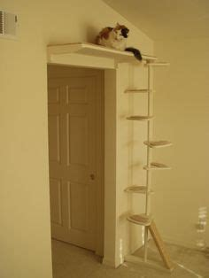 1000 ideas about cat trees on cat
