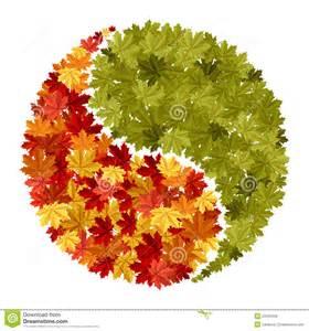 maple tree symbolism maple yin yang symbol stock photo image 20533430