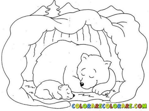 coloring pages animals hibernating how to draw hibernating bear