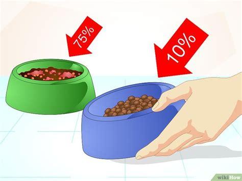 alimenti non digeriti nelle feci 3 modi per solidificare le feci tuo wikihow