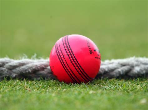 swinging a cricket ball australia s voges unimpressed by pink ball used in first