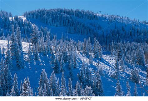 steamboat usa snowboarding usa colorado steamboat springs stock photos