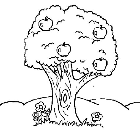 Free Coloring Pages Of Apple Tree Apple Tree Coloring Page