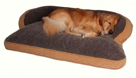 big dog beds cheap big dog beds cheap carolinenixonsblog com