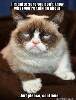 Sarcastic Cat Meme - grumpy cat humeur grumpy cat and chats grincheux dr 244 les