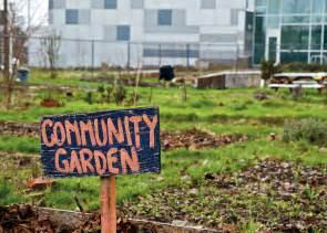 how to develop a community garden communication4health