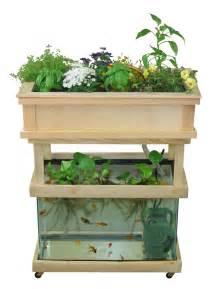 home aquaponics aquaponics fish tank