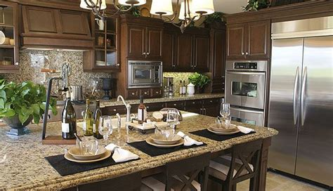 Santa Granite Countertops by The Cabinets With The Contrast Of The Light