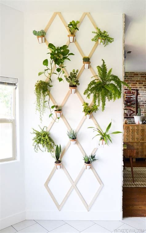 Plants Ideas For Outdoor Planters by Best 25 Plant Wall Ideas On Garden Wall