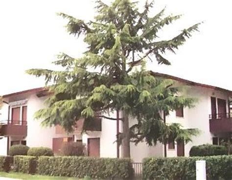 residence gabbiano residence gabbiano eraclea mare dovolen 225 it 225 lie eraclea