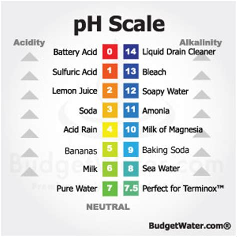 ph levels for water filtration systems – budgetwater.com blog