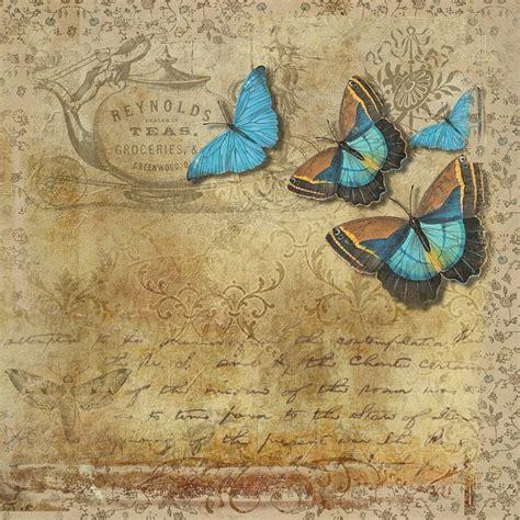free illustration butterfly vintage handwritten free