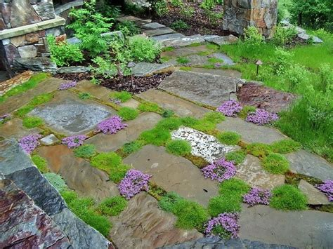 How To Clean Moss Patio by Rustic Patio With Thyme Moss Landscaping Outdoor