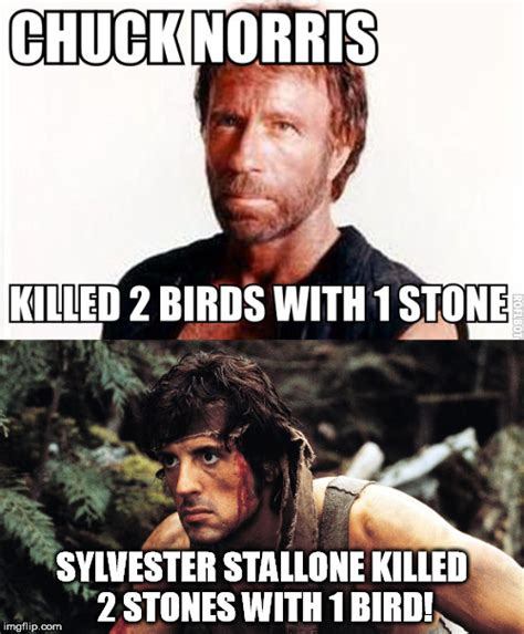 Rambo Meme - sylvester wins imgflip
