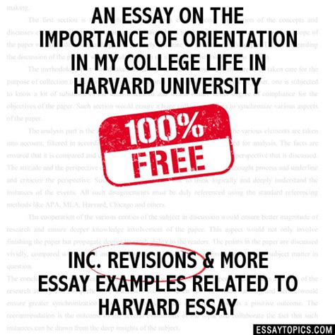 College Application Essay Importance Free Essays For College