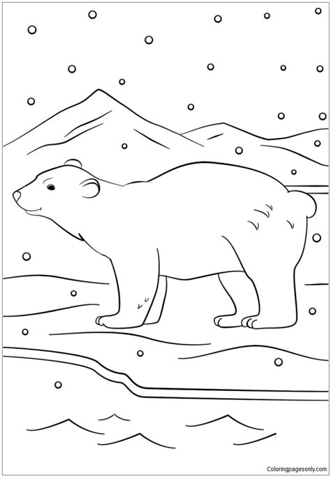 winter bear coloring pages winter bear coloring page free coloring pages online