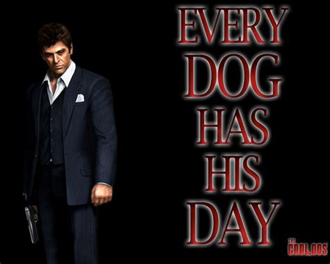 every dogs day every has his day by thecarloos on deviantart