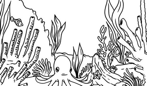 great barrier reef free coloring pages