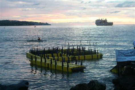 Pelet Apung Merah quot renovasea quot floating fish cage keramba jaring apung home
