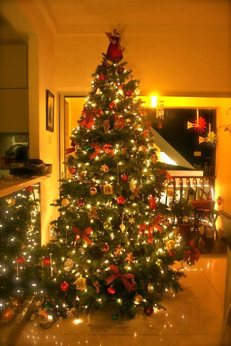 beautiful decorated christmas trees