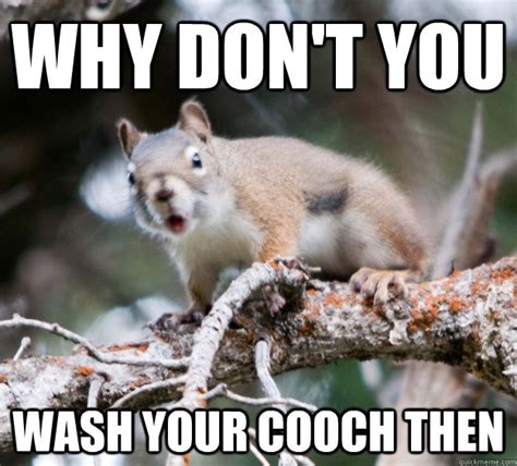 Dead Squirrel Meme - squirrel girl meme