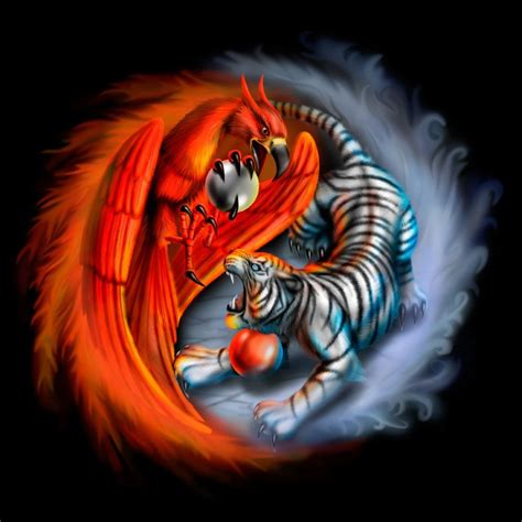 fire and ice tattoo and images yin yang and