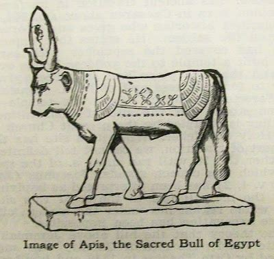 the cult of the apis bull the history shine calf and idol worship in israel