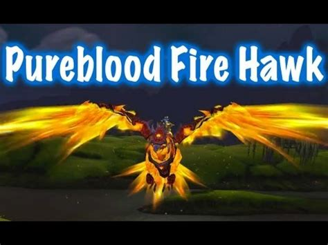 pureblood vire pureblood hawk mount guide world of warcraft