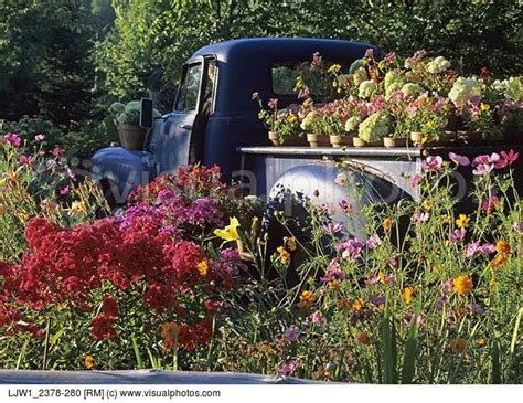 planting   vintage truck bed creates  giant beautiful