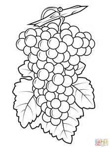 grapes coloring page grape leaf coloring pages