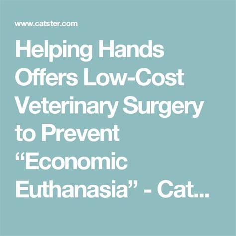 low cost euthanasia 1000 ideas about veterinary surgeon on pet health veterinary medicine