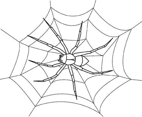 cute spider coloring pages cute black spider coloring page cute spider pinterest