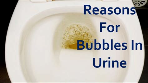 Bubbles In Urine Detox Cleansing Symptom by Reasons For Bubbles In Urine