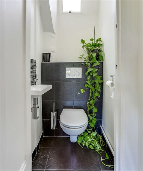 da vaso 25 ideias de decora 231 227 o vasos de plantas limaonagua