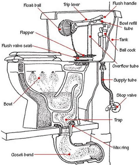 toilet tank parts diagram toilet is not clogged but drains and does not