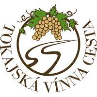 avada theme logo not showing o združen 237 tokaj